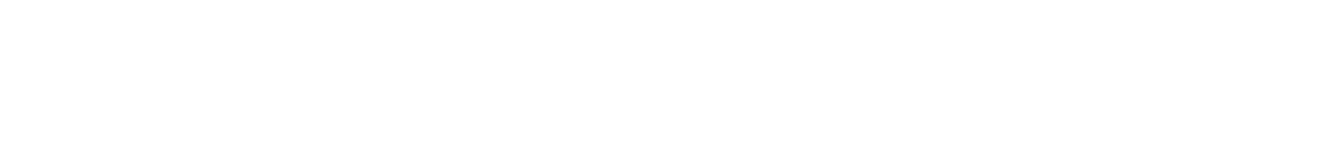 thetradedesk-logolockup-wht